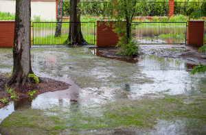 signs that will alert you that you have a drainage problem